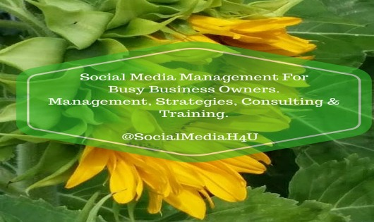 The Benefits Of Hiring A Virtual Social Media Manager